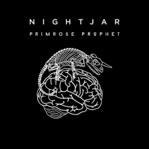 Nightjar - Primrose Prophet